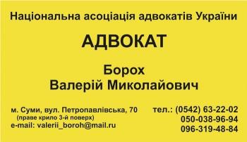 Лицевая сторона визитки адвоката Борох В. Н.