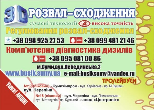 "стр. 22 / СТО ""Бусик"" (2) / ""Троллейбусы"""